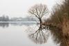 Schulens Meer (BE) (de_frakke) Tags: morgen morning schulensmeer limburg belgium landscape landschap linkhout