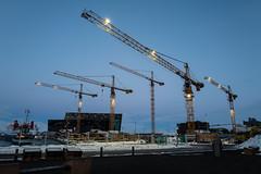Harpa Cranes-13 (KING ODEN) Tags: leica leicaq reykjavik iceland cranes harpa