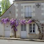 Saint-Jean-Saint-Germain (Indre-et-Loire) thumbnail