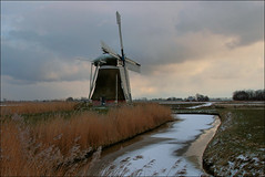Meervogel in winterkleed (TeunisHaveman) Tags: mill molen hoeksmeer garrelsweer loppersum winter ijs soe ngc
