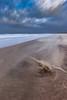 Storm Creations (Harold van den Berge) Tags: beach canon1635lf4 clouds duinen dune haroldvandenberge landscape landschap leefilter lucht netherlands nieuwvliet outdoor sky storm strand tide water wolken zeekust zeeland zeeuwsvlaanderen