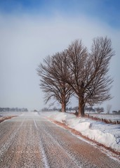 Bitterly Cold Blues (Justin Loyd Photography) Tags: scenic beautiful flickr photography vertical 70200f28 eos canon5dmarkiv trees drift road travel midwest country rural snow january blue gravel frigid windy iowa winter cold