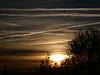 ¡Oh cielos! 157. Caminante no hay camino.... (bego vega) Tags: ¡ohcielos cielos nubes clouds estelas condensación contrail amanecer sunrise olivo sol sun madrid vf bego vega veguita bv begovega