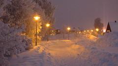 IMG_4347 (Mr Thinktank) Tags: raureif frost