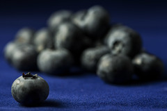 BlueBerries (Lo8i) Tags: circle fruit round rounded stilllife blueberries 7daysofshooting week30 shootanythingsaturday