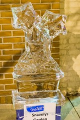 Ice Flower (kevnkc2) Tags: stdntsdoncooper lightroom pennsylvania winter historic downtown icefest ice sculpture chambersburg nikon d610 franklin county tamron 2470mmg2 sp2470mmf28divcusdg2a032