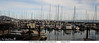 Pier 39, Port of San Francisco (Island Lures) Tags: pier39 portofsanfrancisco