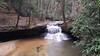 Red River Gorge - Rock Bridge Trail - Wolfe County, Kentucky, USA - April 1, 2017-3-mod (mango verde) Tags: rockbridgetrail redrivergorge wolfecounty kentucky usa