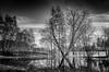 X (tom22_allgaeu) Tags: allgäu deutschland europa immenstadt germany europe allgaeu oberallgäu sw schwarzweis bayern bavaria bw blackandwhite blackwhite bianconero monochrom nikon natur nature nocolor nikfilter tamron tree baum spiegelung reflection
