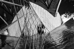 Reflections (Leipzig_trifft_Wien) Tags: reflection mirror facade glass abstract black white windows lines curves monochrome architecture gehry spain basque pov composition light mono bnw bw camera canon grey outside form shape chaos