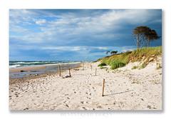 Weststrand-(1) (OdenWALDfotograf) Tags: dars ostsee balticsea strand beach weststrand meer sea