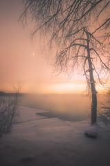 "Cold river of Tuonela"" (petrisalonen) Tags: river imatra vuoksi finland water fog yellow orange sun sunlight light nature frozen colours winter sunshine tree ice freezing"