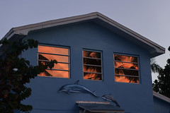 The Sunshine State (francois ollivier) Tags: travel explore discover florida roadtrip usa francoisollivier irma sunset beach miami everglades trip america wander christmas sunshine sunshinestate thekeys keylargo motel naples