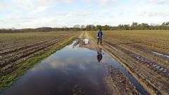 Klompenpad Uddelermeerpad (Cor D.) Tags: uddel veluwe klompenpad walksinthenetherlands