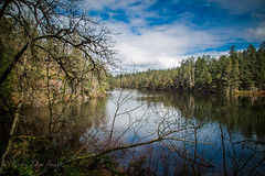 Thetis Lake (Every Day Images) Tags: lakes landscape britishcolumbia canada vancouverisland erniedickey yvr