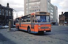366111 DEINZE - GENT (brossel 8260) Tags: belgique bus prives westvlaanderen