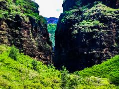 Hawaii-WaimeaCanyon-86.jpg (Chris Finch Photography) Tags: landcapes hawaiiphotography kauai waimeacanyon rainforest canyon river jungle falls chrisfinchphotography landscapephotographer hawaii waimea landscapephotographs grandcanyonofthepacific photographs landscapephotography canyons ocean waterfall waterfalls chrisfinch photography island landscape pacificocean islands wwwchrisfinchphotographycom valley