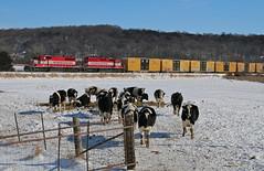 Okee, Wisconsin (UW1983) Tags: trains railroads wisconsinsouthern wsor reedsburgsub l463 local okee wisconsin