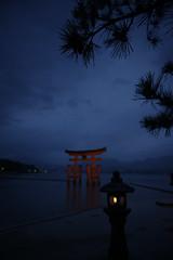 紺色 (小川 Ogawasan) Tags: japan japon unesco worlheritage shinto sacred shrine torii lantern night evening pine sea miyajima
