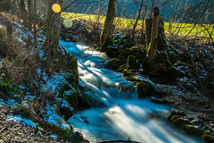 Sunny creek (alexander_skaletz) Tags: sunny tree landscape landscapephotography natur photography grass cold blue relaxation eve village germany badenwürtemberg nikon d5300 nikond5300 wood water creek stones stone wasser