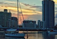 #mood#nikonphotography#nikond3400#surfersparadise#australia#goldcoast#sunset (araffi92) Tags: australia goldcoast nikond3400 nikonphotography surfersparadise mood sunset