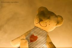 #oso #bear #osito #teddy #2016 #málaga #andalucía #españa #spain #love #photoshoot #shoot #shooting #photoshoot #fotografíadeestudio #estudio #studio #humo #smoke #sombra #shadow  #photographer #photography #picoftheday #canonistas #canonimagen #CanonForu (Manuela Aguadero) Tags: canoneos7d españa shadow studio canonistas 2016 fotografíadeestudio osito smoke andalucía teddy spain canonimagen oso picoftheday humo manuelaaguadero canonforum photography sombra photoshoot love canoneos estudio photographer shooting bear canon7d málaga shoot