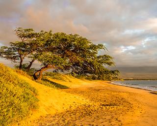Sugar Beach, Maui