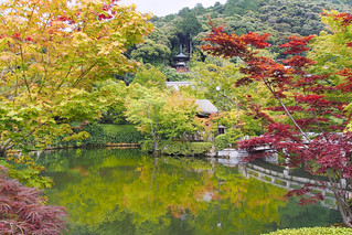 永観堂禅林寺 Eikan-dō Zenrin-ji  Kyoto