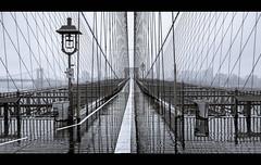 Just me (Nico Geerlings) Tags: brooklynbridge nyc ny usa newyorkcity brooklyn manhattan pedestrianwalkway rain raining rainy ngimages nicogeerlings nicogeerlingsphotography reflection