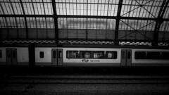 Sprinter Train (HansPermana) Tags: amsterdam netherlands nederland niederlande holland noordholland northholland eu europa europe city cityscape citycenter train station amsterdamcentraal monochrome blackandwhite sprinter