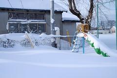 See you next spring (しまみゅーら) Tags: fujifilm xe2 xf 35mm f14 ebc fujinon astia oneday shimokita hachinohe train trip