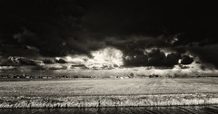 In The Beginning There Was Darkness, Don't Let Them Fool You, There Still Is. (Alfred Grupstra) Tags: nature ruralscene field agriculture cloudsky blackandwhite farm landscape sky outdoors nonurbanscene cloudscape meadow nopeople scenics summer storm land dramaticsky grass