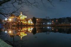 Winter Shinobazunoike (sapphire_rouge) Tags: uenopark 上野 上野公園 不忍池 ueno ngc illumination nightview tokyo