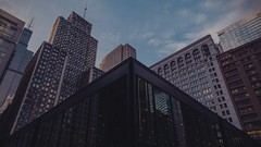 Ludwig Mies van der Rohe (Jovan Jimenez) Tags: ludwig mies van der rohe loop post office architecture timelapes captured with sony a6500 zeiss touit 12mm kodak vision3 200t 5213 6500 alpha ilce film emulation luts widescreen 16x9