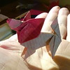 Papillon - Jun Maekawa (Stefano Borroni (Stia)) Tags: origami cane dog animali papillon perro kunz natura origamilove cinese annodelcane zodiaco papiroflexia folding paper carta piegarelacarta cagnolino arte