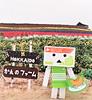 Omiyage Danboard Hokkaido Melon (MurderWithMirrors) Tags: danboard danbo revoltech hokkaido melon souvenir mwm omiyage