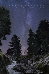 Stars Pines and Water (tbourley) Tags: nightscape milkyway voielactée frenchalps alpes longexposure