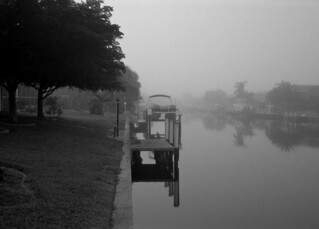 foggy florida morning