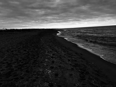 Il mare in autunno (lauratintori) Tags: shells shell nikond7200 nikonphotography nikonphoto nikon relax walk walking alone water seawaves waves blackandwhite gray blackandwhitephoto white black autumn seaside beach sea nocolour photography photo picture pic ph lauratintoriph