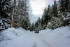Snowed Over (Alison Claire~) Tags: canada ca bc british columbia north america travel travelling traveling outdoor outdoors canon canoneos canoneos600d eos eos600d 600d rebel rebelt3i alison claire vancouver snow road car tree trees forest sky nature urban
