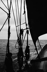 Heading out (David Ian Ross) Tags: monochrome 35mm nikon voyage redsails portbow hemp canvas redlead fore crew northsea deadeyes staysail deck east smack shrouds port tar sea boat water