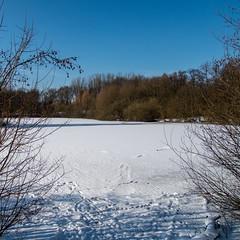 Winter an der Berner Au 01 (p.schmal) Tags: olympuspenf hamburg farmsenberne bernerau winter