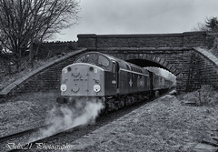 20180217-IMG_0152-Edit-Edit (deltic21) Tags: type 4 1coco1 class 40 40106 atlantic conveyor whistler ee english electric br blue east lancs lancashire railway rail rails train trains track tracks loco locomotive power traction classic heritage preservation preserved north west bury ramsbottom rawtenstall burrs summerseat bridge outdoor nature trees line lineside monochrome mono bw black white british diesel gala thrash haulage wheel wheels steel bogie bogies
