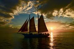Dogwood2018,Color Harmony (pitstit) Tags: keywest sunset dogwood2018 dogwood52 dogwood18colorharmony dogwood18week2 color harmony blue pink sailing boat reflection sails clouds florida coast west