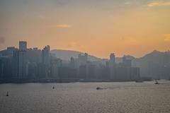 DSC03707 (africaninasia) Tags: kaitak kowloon hongkong zeiss sony sonya7ii thedarkside hk zeisslens