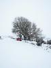 Red Door (Steve_Mallett) Tags: beddmorys landscape newport pembrokeshire red reddoor snow thebeastfromtheeast treffynnon england
