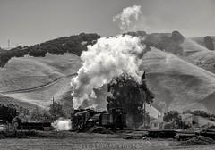 Departing Niles (rolfstumpf) Tags: usa california niles sp2472 steamlocomotive monochrome steam trains railway railroad caboose ggrm nilescanyon olympus