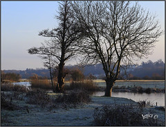 A Morning To Tingle The Senses. (Picture post.) Tags: landscape nature green winter frost water reflections trees hills riverside river paysage arbre eau bluesky sunlight shadows