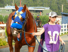 Number Ten (knightbefore_99) Tags: vancouver eastvan cool home local bc great summer sol sun best number ten hastings racecourse bet horse thoroughbred fast