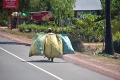 Motorcycle with a load (D70) Tags: cambodia show phumi bos siem reap province motorcycle with load green yellow bags nikon d750 28300mm f3556 ƒ71 3020mm 13200 1600